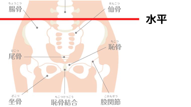 股関節の正しい位置の説明